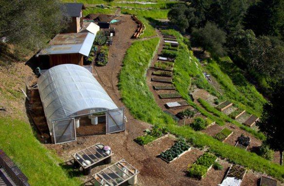 Prepper Farm