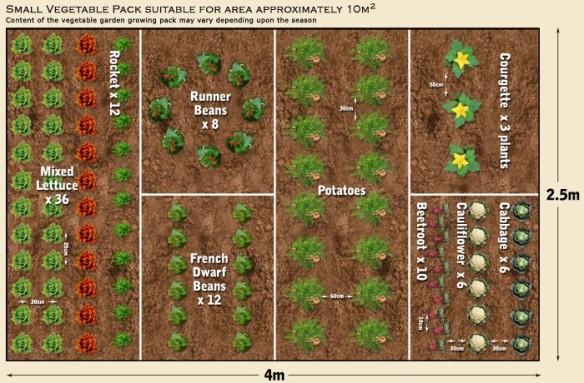 Garden-14-e1394871332991