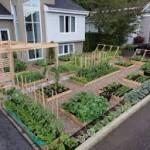 Garden-3-150x150