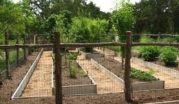 Garden-5-e1394871485438