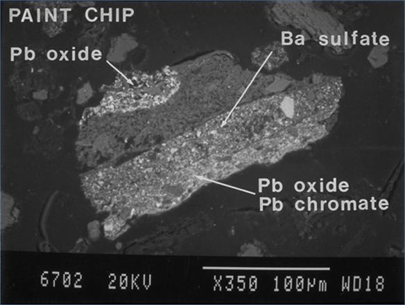 paint-chip