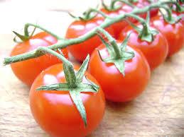 Tomatoe1