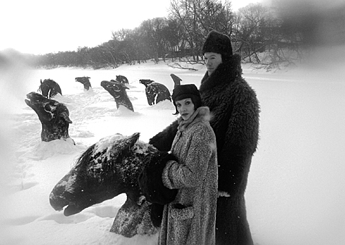 Winnipeg-Manitoba-Canada.-Horses-frozen-to-death-in-river-now-evil-attraction