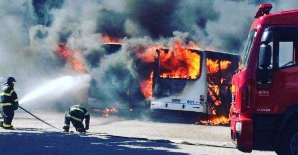 Brazil Burns